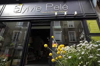 Sylvie Pelé Fleuriste